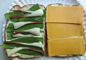 ramp sandwich
