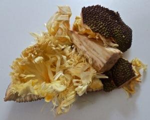 jackfruit 5