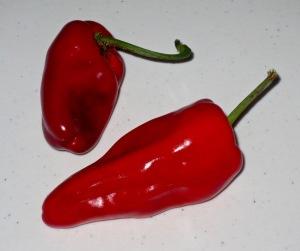 nachos 4