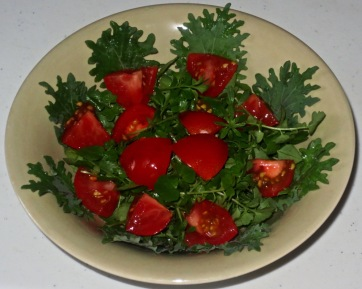 wild salad 5