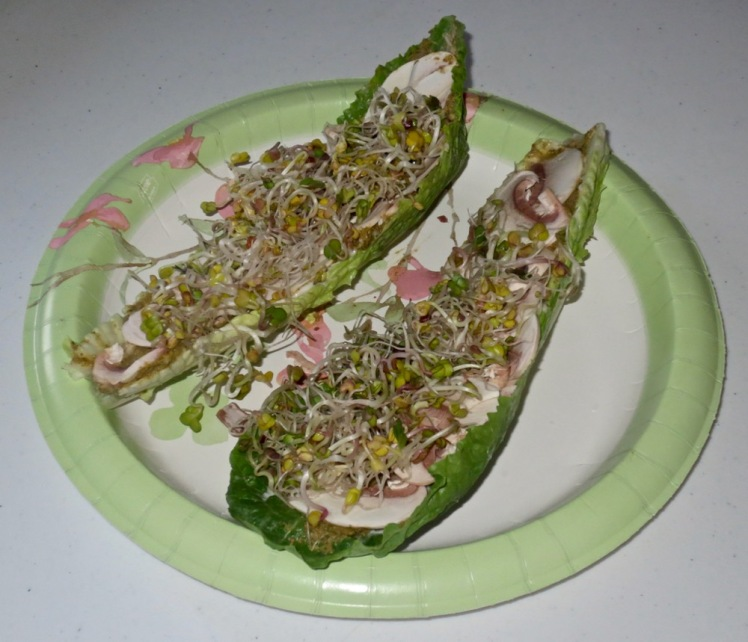 hummus, lettuce, mushrooms & sprouts