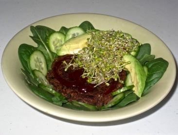 vegan burger patties 13