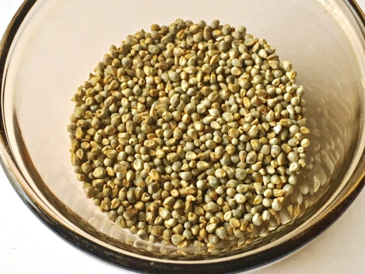 sprouted millet