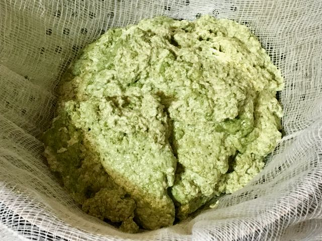 moringa paneer stuffed paratha
