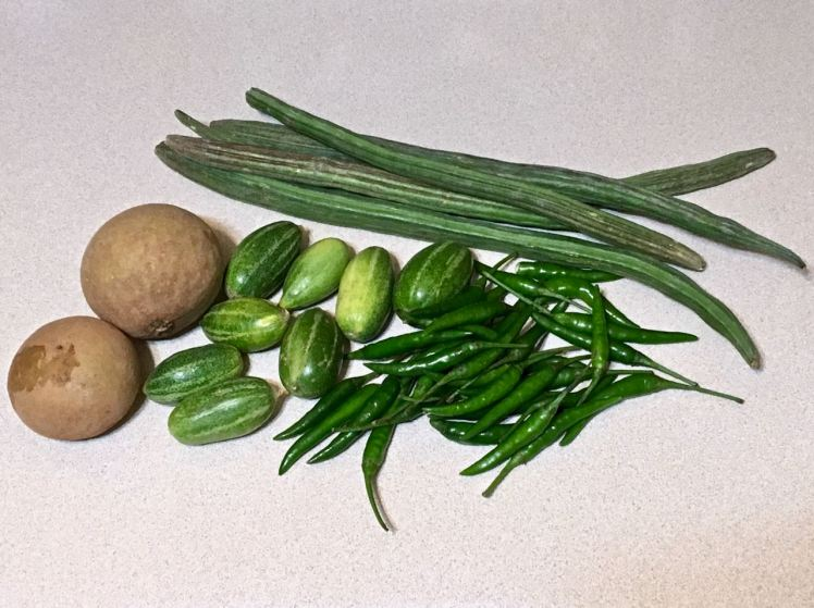 drumstick, chiko,ivy gourd, chilis