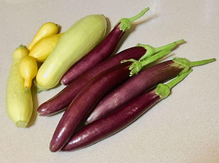 battered  eggplant & yellow squash