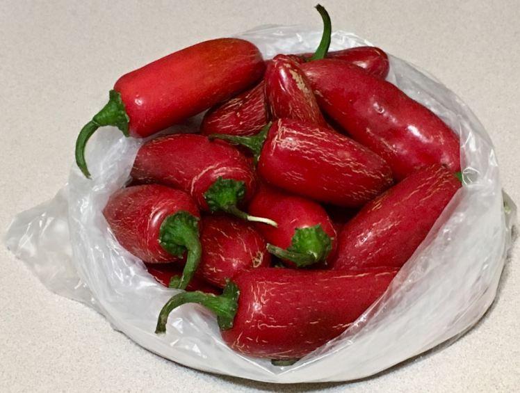 ripe jalapeños