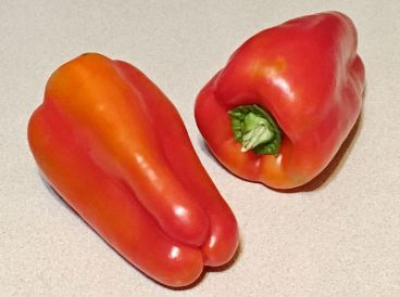 quinoa stuffed cubanelle peppers
